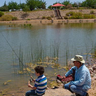 fishing at trees lake